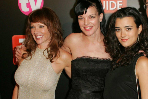 The Leading Ladies Of NCIS What Are They Doing Now